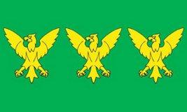 Caernarfonshire County Flag