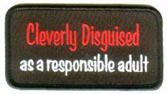 Cleverly Disguised as a Responsible Adult Embroidered Patch