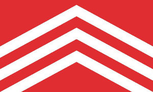 Glamorgan County Flag